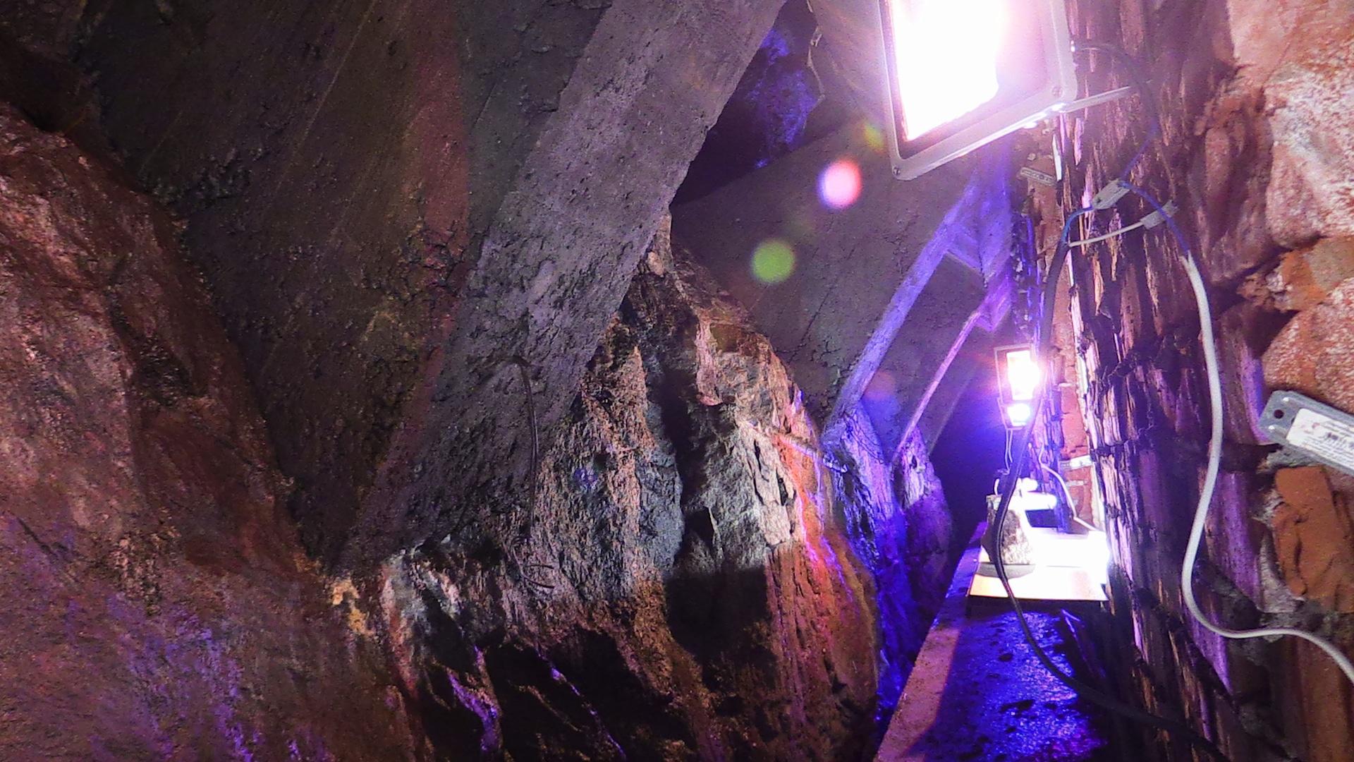 Геологический зал бункера
