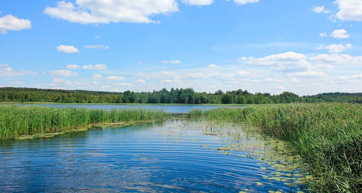 Себежский национальный парк - это прекрасные озера