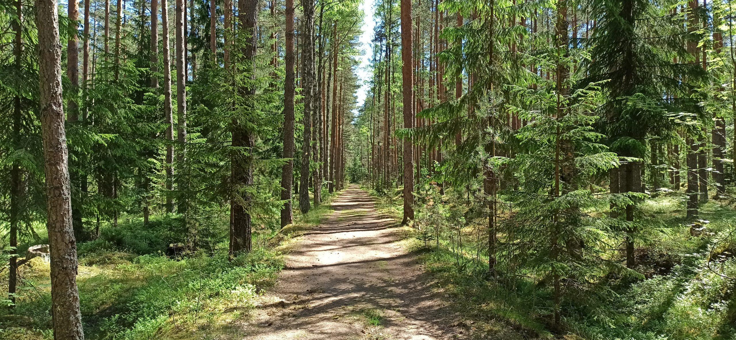 Экотропы Ленинградской области