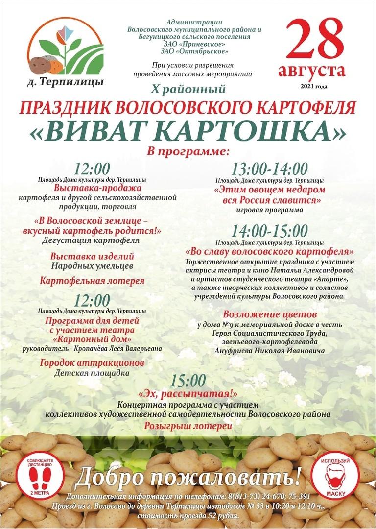 Программа праздника картофеля в Волосово 2021